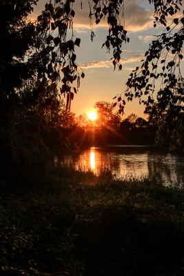 """Západ slunce, slepé rameno řeky Moravy """"Zadní kruhy""""."""