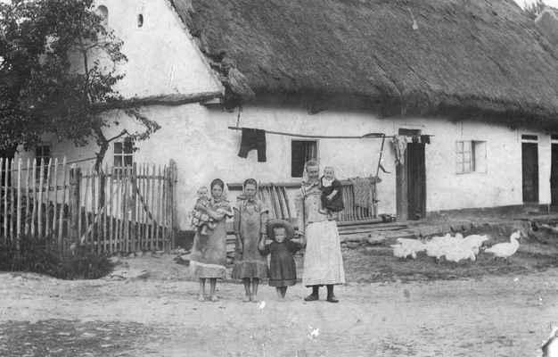 1910x Losiná 19 - Losiná 19 , roku 1909 koupil Jan Fajfrlík a 1924 prodal mlékaři Pinďuchovi a ten v r 1929 Fr.Česalovi. Tento snímek je z archivu rodiny Fajfrlíků, takže cca 1910-1920 a je zde asi Marie Fajfrlíková roz.Peroutková s dětmi.