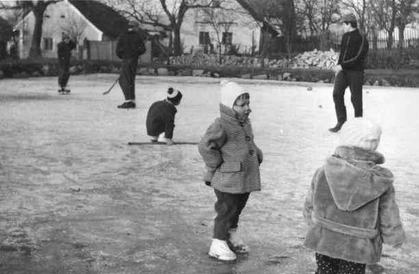 1968 - na rybníku na Bambousku - 1968 na rybníku na Bambousku - v pozadí staré chalupy Kordů a Krýslů (Petra Černá - Hajšmanová)