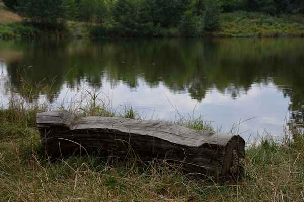 přírodní lavička